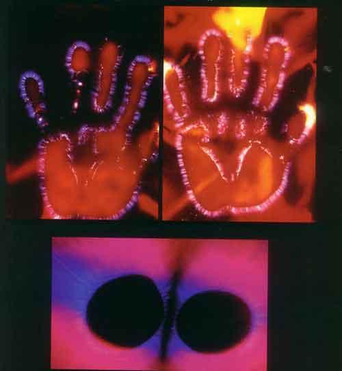 """Placas fotográficas del efecto corona obtenido mediante el efecto electrofotográfico Kirlian, a menudo son confundidas con fotografías del """"aura"""" humana."""