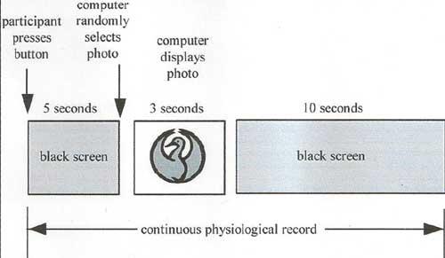 En el experimento de Radin, los estímulos se eligen al azar para los dos grupos de imágenes. Un grupo contiene imágenes calmas, por ejemplo, imágenes de paisajes. El otro grupo contiene imágenes con contenido violento o con contenido erótico.