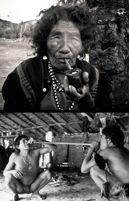 Los indios guaraníes del Brasil también tienen una tradición que respeta los sueños. Hay leyendas tribales que sostienen que en la antigüedad, los nativos se dividieron en tres grupos, el Pueblo del Sol, el Pueblo de la Luna, y el Pueblo de los Sueños. Los guaraníes habitan este último; algunas comunidades tienen Grupos o Círculos de Sueños, los cuales comparten al amanecer. A veces un sueño empieza dando un sentido al quehacer cotidiano del pueblo -no necesariamente el sueño de un payé o chamán.