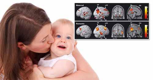 Un estudio examinó la empatía y la comunicación extrasensorial en 180 díadas madre-hija. La madre sirvió como percipiente y el niño/a como emisor de mensajes telepáticos, y se encontró que alguna forma de angustia empática estaba significativamente relacionada con la telepatía.